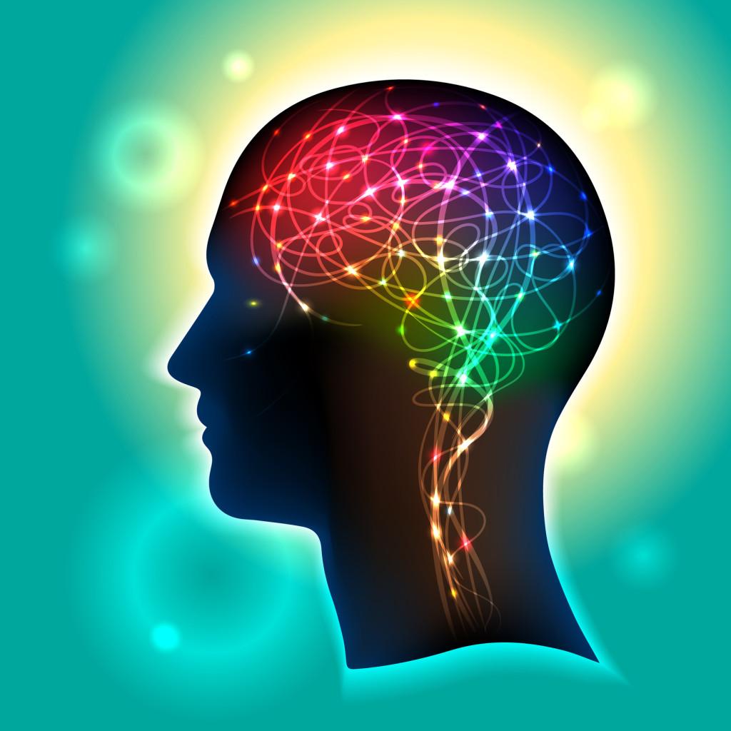 Alimentar a su cerebro