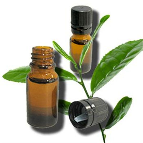 101 Tea Tree Oil usos que usted no sabe