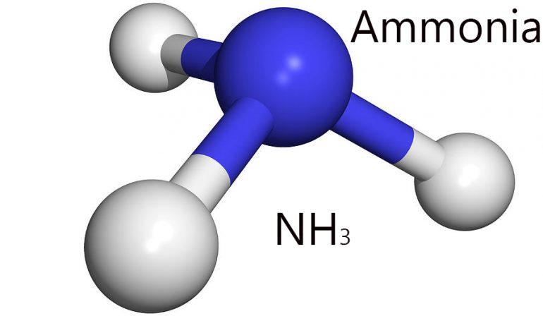 Niveles normales de amoníaco