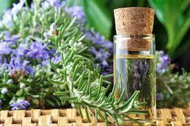 aceites esenciales para mordeduras de insectos